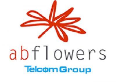 BigMat-Guerrero-logo-abflowers-chimeneas-estufa-barbacoa