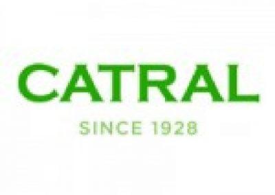 BigMat-Guerrero-logo-catralchimeneas-estufa-barbacoa-150x150
