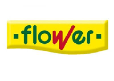 BigMat-Guerrero-logo-flower-productos-quimicos-pintura