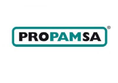 BigMat-Guerrero-logo-propamsa-cementos-derivado-ceramica-cubiertas-tejado
