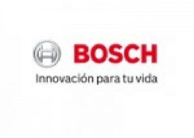BigMat-Guerrero-logobosh-herramientas-y-equipamientos-150x150